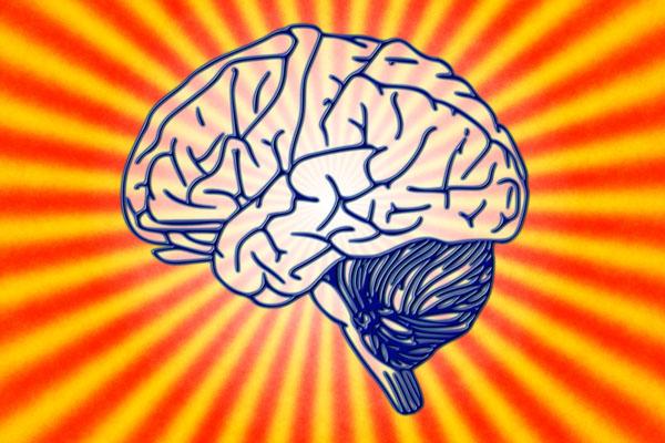 tu mente puede crear el mundo